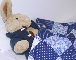 Big-Bo-goes-to-sleep-under-China-Blue-Patchwork-quilt-Q000101